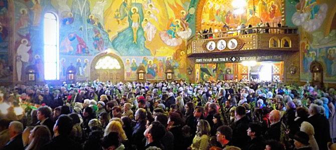 Treść i liturgika Niedzieli Palmowej